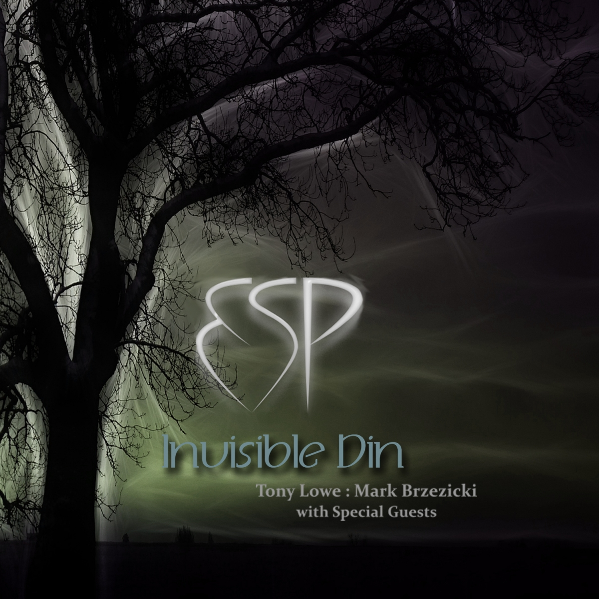 Lowe & Brzezicki's ESP - Invisible Din  - ESP Project - 2016