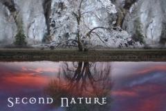 Tony Lowe & Alison Fleming - Second Nature - 2007