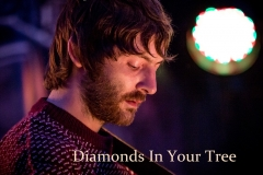 Chris Gray - Diamonds In Your Tree - 2015